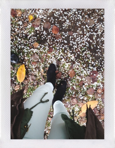 February-Confetti